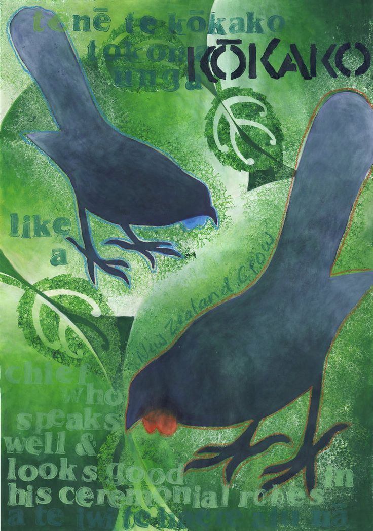 Kokako by *HelenParkinson on deviantART  Kokako (pronounced -- Kookako)  Maori proverb -- Teenee te Kookako tokomaunga a te iwi te haere atu naa.  Like a chief who speaks well and looks good in his ceremonial robes.  This bird is a native of New Zealand.  It appears on our $50 note.  The south island species with the orange wattles are now listed as extinct.  More information on this bird along with its voice can be found here ... http://www.nzbirds.com/birds/kokako.html