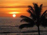 24 best hawaii images on pinterest kauai hawaii and hawaiian if youve seen my business card this should look familiar another sunset reheart Image collections