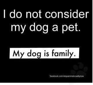 probably the best family member!  laughing..........
