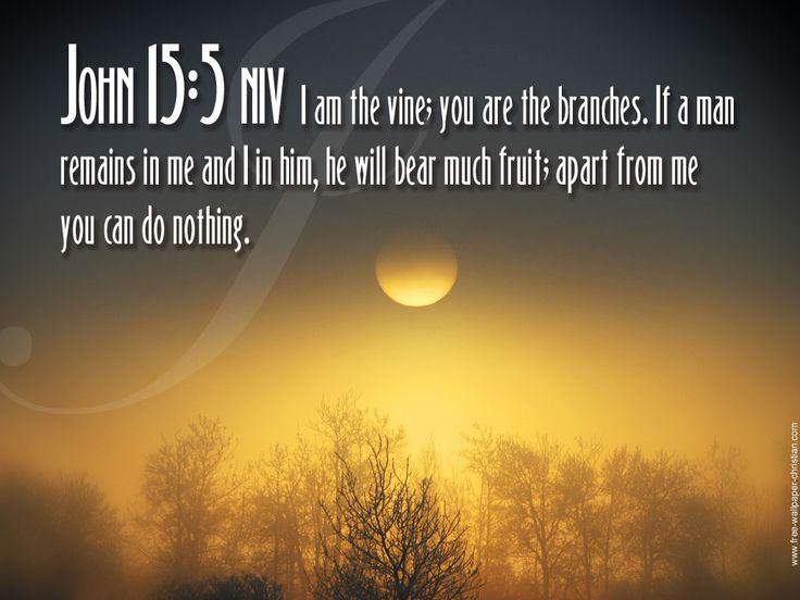 Great Free Christian Photos With Scripture | John 15:5 Desktop Bible Verse  Wallpaper | Free. Life Inspirational QuotesChristian ...