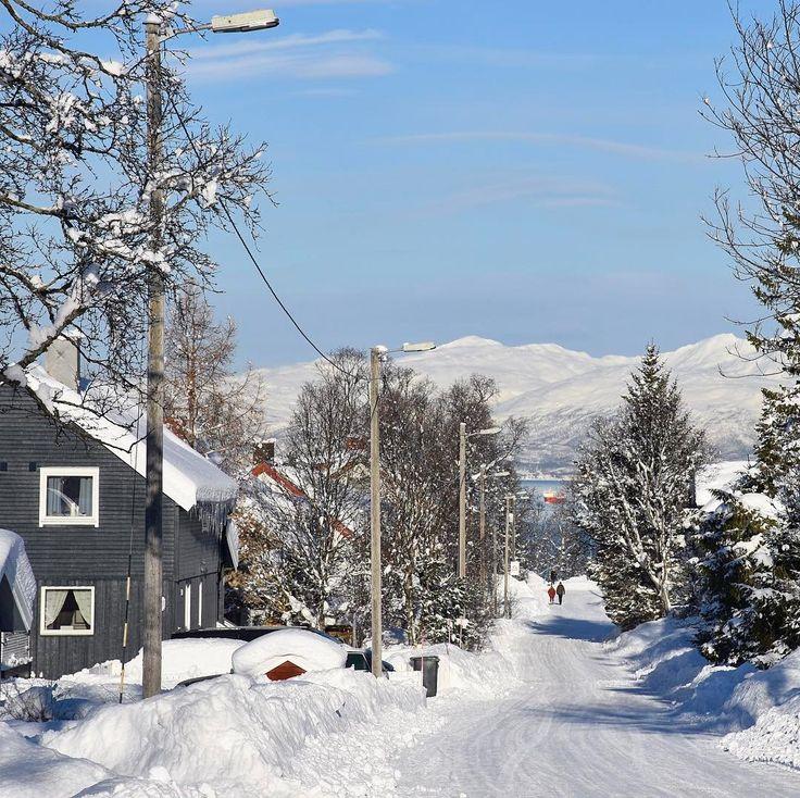 Paesaggi innevati tra #leviedelnord #rainbowRTW a #Tromsø la neve e la luce rendono tutto ancora più candido. In cammino verso Fløya non c'è un angolo di strada che sia scoperto tutto è neve tutto è ovattato e carico di luce riflessa. Scopri gli itinerari su www.leviedelnord.com #visitnorway #visittromso  @leviedelnord  @visitnorway_it  @visittromso