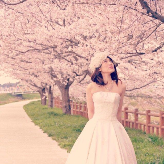 #weddingphoto #weddingdress #さくら#桜#ロケーションフォト#春#花見#桜並木#ウェディングドレス#花嫁#成田