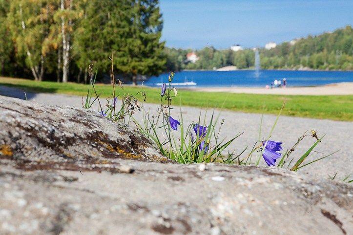 Lakeside in Haninge