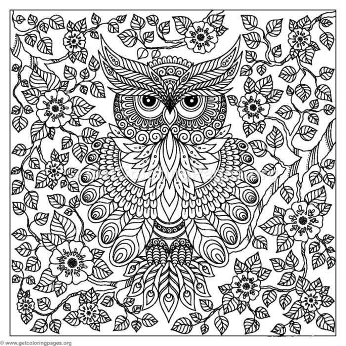 Free To Download Abstract Owl Coloring Pages Owl Coloring Pages