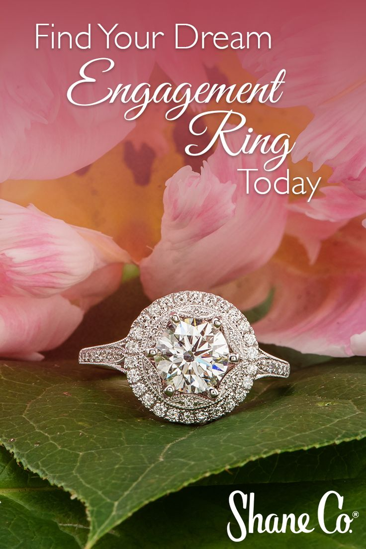 The 29 best Engagement rings images on Pinterest | Rings ...