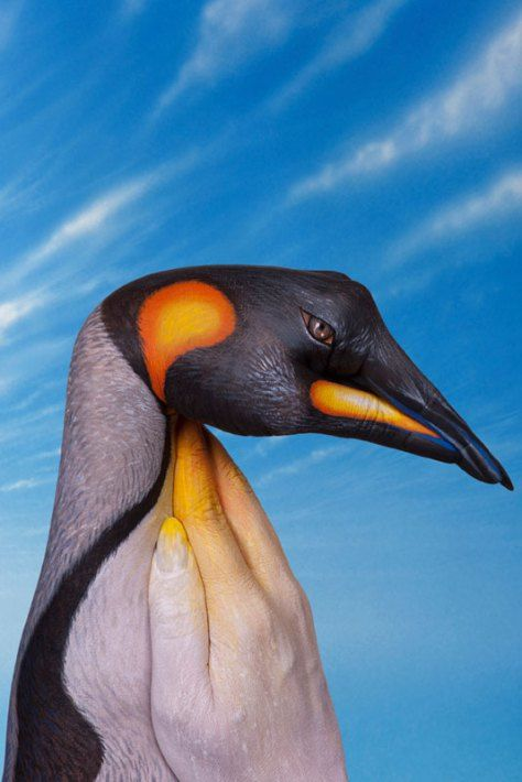 penguin handpainting by guido daniele