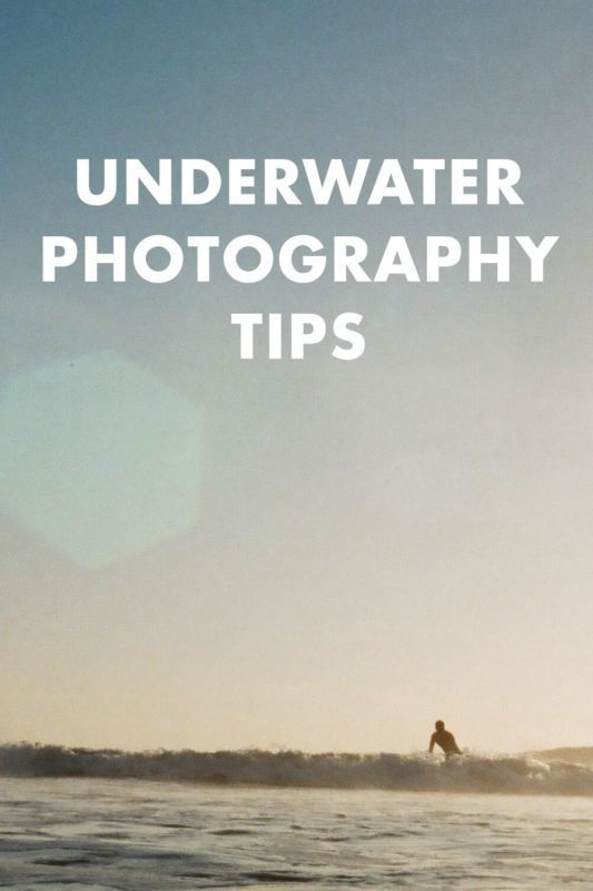 Underwater photography may seem intimidating (and expensive), but it's really not that hard to get started. You can even use just an inexpensive underwater disposable camera for your first few times to see if it's something you really want to invest in. Want to learn more? Continue reading as eBay shares a guide to help you get started with your new hobby: underwater photography.