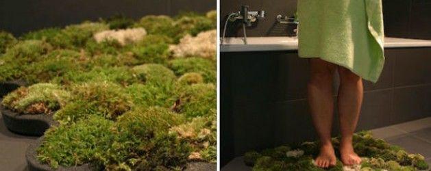 Tapetes de musgo: llevá la naturaleza a tu baño | La Bioguía