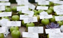 ...wer sitzt wo/präsentation der tischkarten äpfel (dann muss aber am tisch der name nochmal stehen, oder freie platzwahl am tisch)