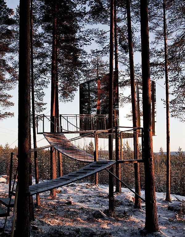Treehouse Masters Mirrors 84 best treehouses images on pinterest | architecture, treehouses