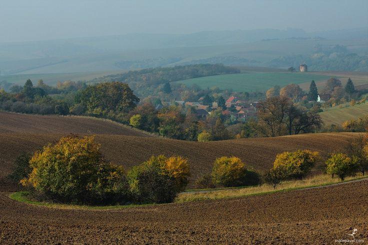 #198. Colors of fall. Moravia. Czechia. - http://www.oskinpavel.com/
