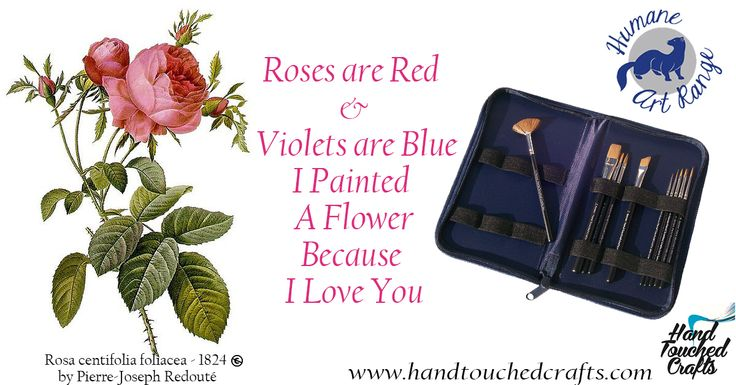 """""""Roses are red violets are blue I painted a flower because I Love you"""" with the help of Hand Touched Crafts Humane Art 10pc Artist Paint Brush Set  Rosa centifolia foliacea, a painted engraving of a rose by Pierre-Joseph Redouté (1759–1840)."""
