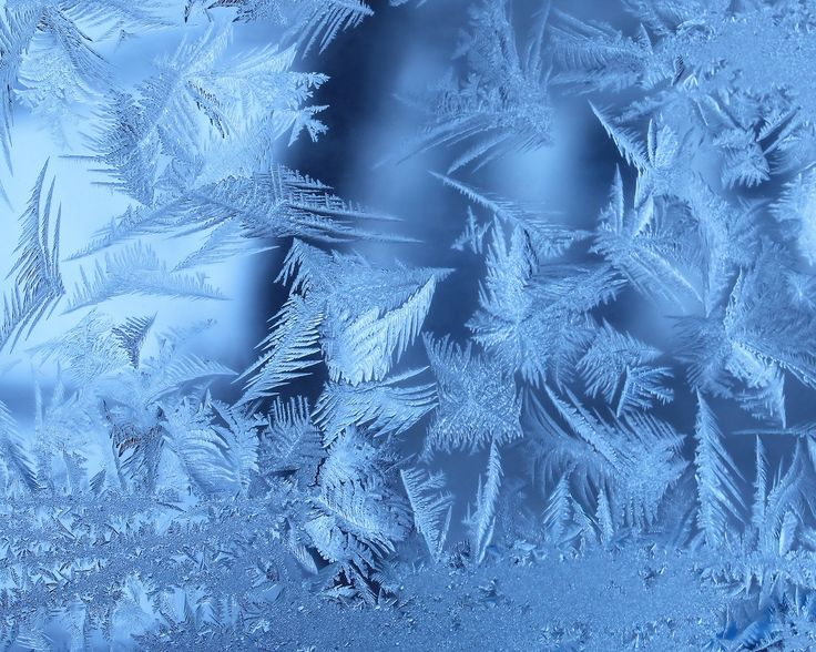 frozen-window Wallpaper