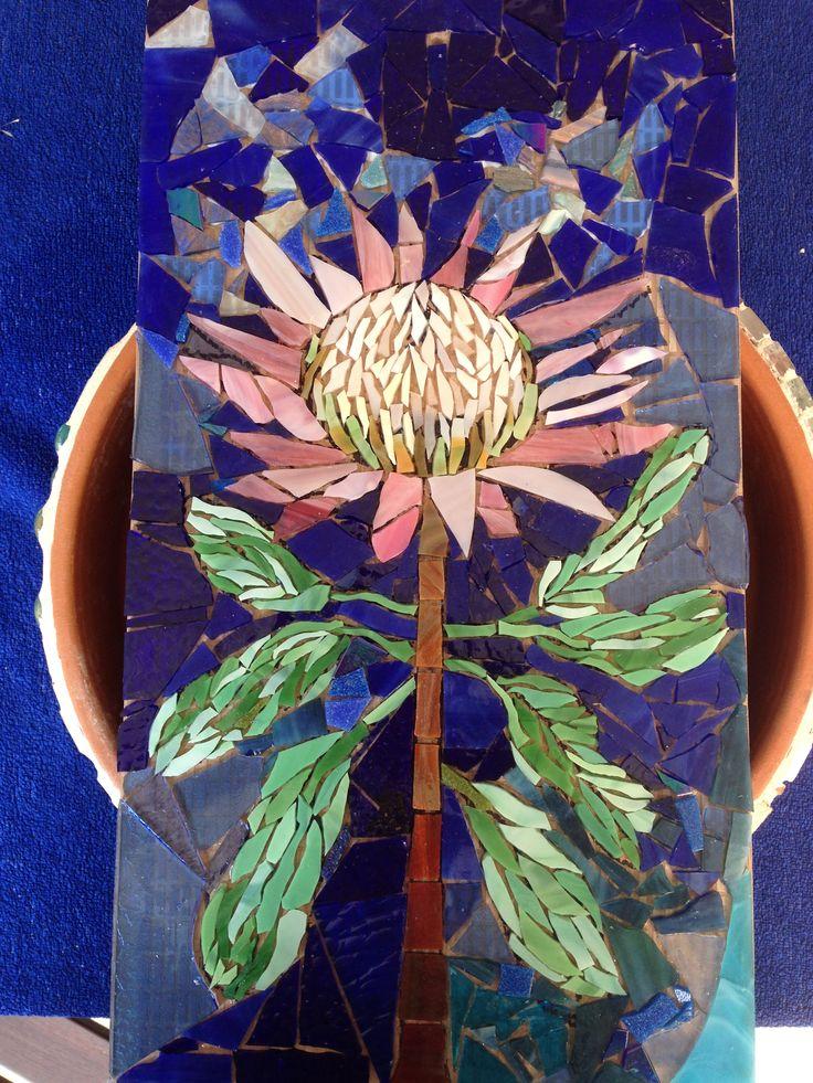 Photo # 3  King protea