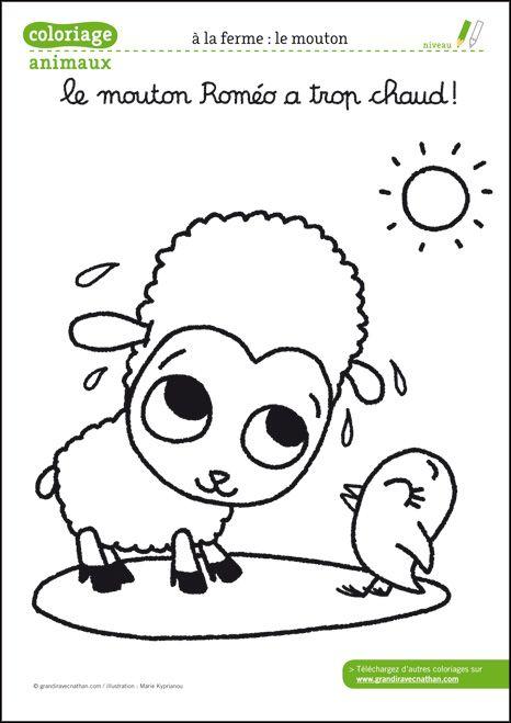 88 best animaux ferme images on pinterest farm animals - Coloriage d animaux de la ferme ...