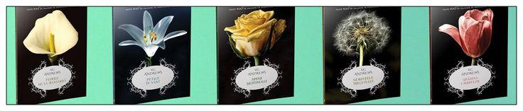 Recenzie seria Florile din mansardă de V. C. Andrews