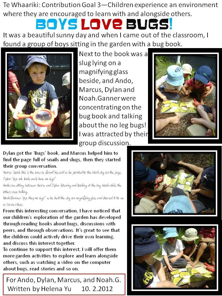 BOys+love+bugs--Group+learning+story..jpg 720×960 pixels