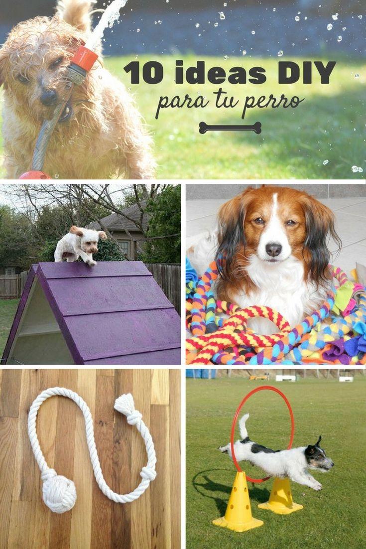 Ideas DIY para perros  ➜  10 ideas para hacer tus propios juguetes caseros para perros.  #DIY #Perros #Mascotas #Juguetes #Caseros #Manualidades #Handfie