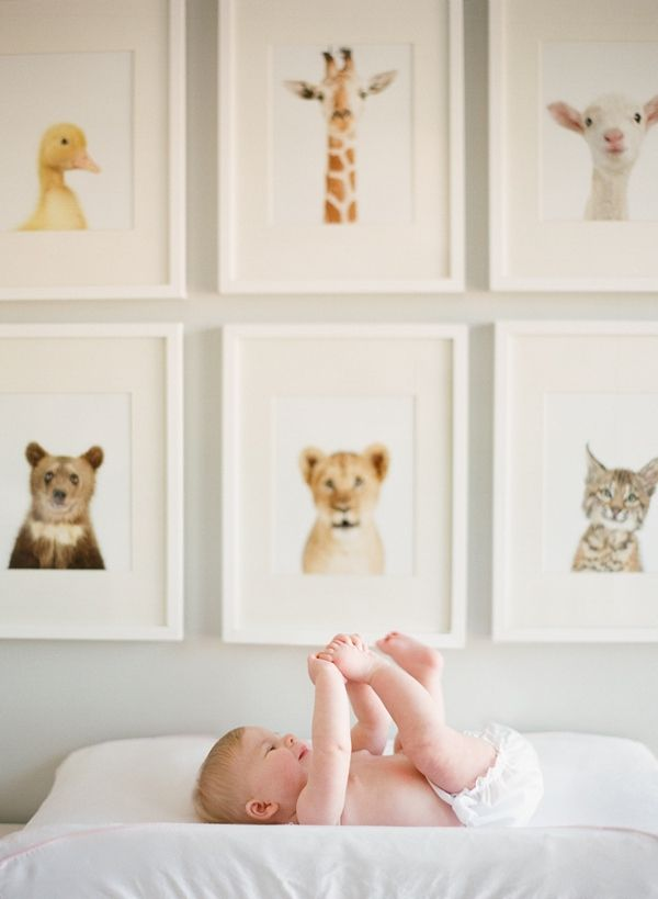 Hang Pictures Of Animals In Simple White Frames For The Baby S Nursery Bundle Joy Pregnancy Babies Pinterest And Bedroom