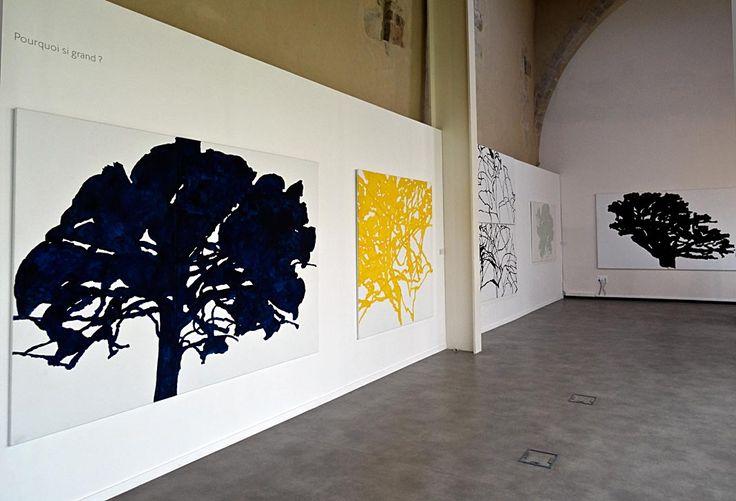 Alexandre Hollan Musée de Lodève 2016