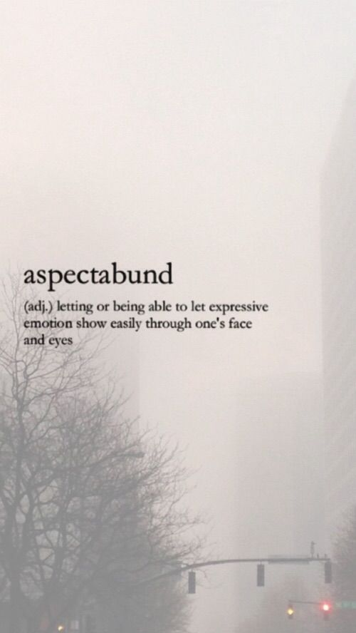 ASPECTABUND (adj) letting or being able to let expressive emotions show easily through one's face and eyes.