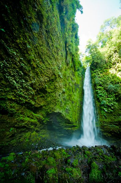 La Cascada verde / The green waterfallSector Las Cascadas, cerca del Lago Llanquihue. (Chile)