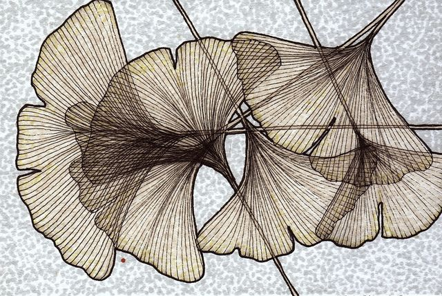ginkgo leaves: postcard
