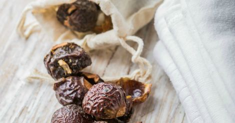 5 Uses For Soap Nuts {Shampoo, Body Wash, Toothpaste, Laundry Detergent, & Cleaning!}