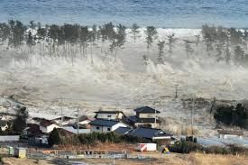 real tsunamis - Google Search