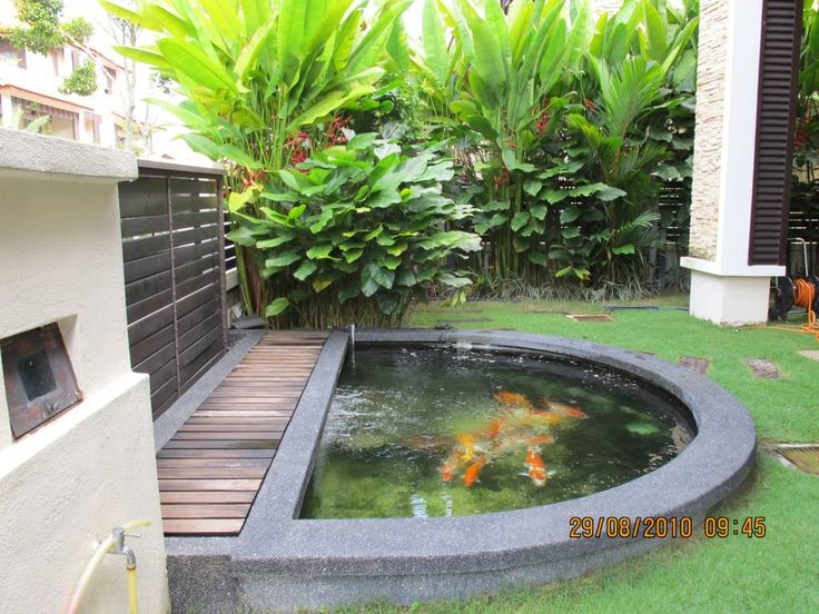 Koi Pond Design Ideas this koi pond is designed well it holds plenty of water has fountains for aeration and has lots of plants that provide the fish with food Garden Design Backyard Fish Pond Design Ideas Circular Shape Beautiful Garden Feel Fresh With Fish Pond Ideas