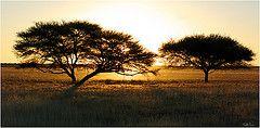 "Kalahari Sunset   by Lariete (un pò ""on"")"