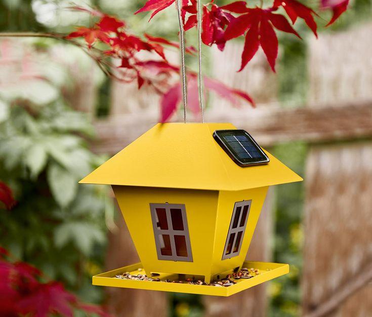 Solarny karmnik dla ptaków 331799 w Tchibo
