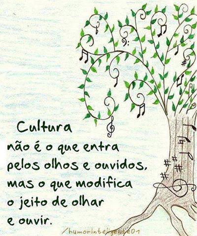 Cultura não é o que entra pelos olhos e ouvidos, mas o que modifica o jeito de olhar e ouvir. Mais