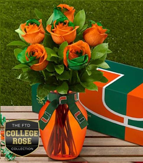 The U - University of Miami Hurricanes - roses