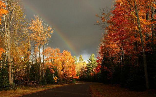 Regenboog boven herfst landschap   HD Wallpapers