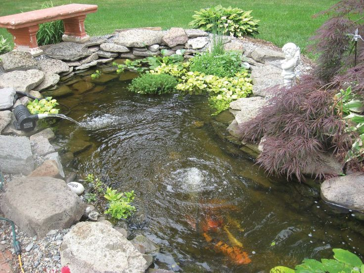 Small Koi Pond Kits Garden Pond And Koi Pond Aeration Backyard Sanctuary Pinterest Koi