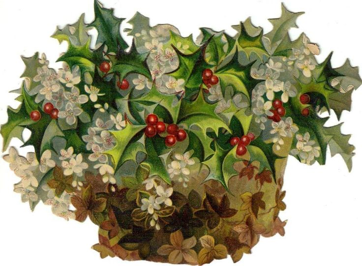 Basket of Holly & Snowdrops: