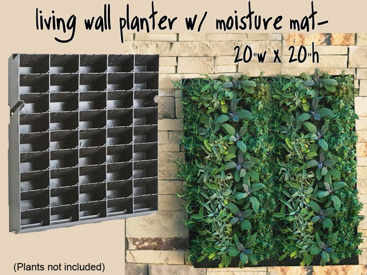 Diy vertical garden systems living wall planter w