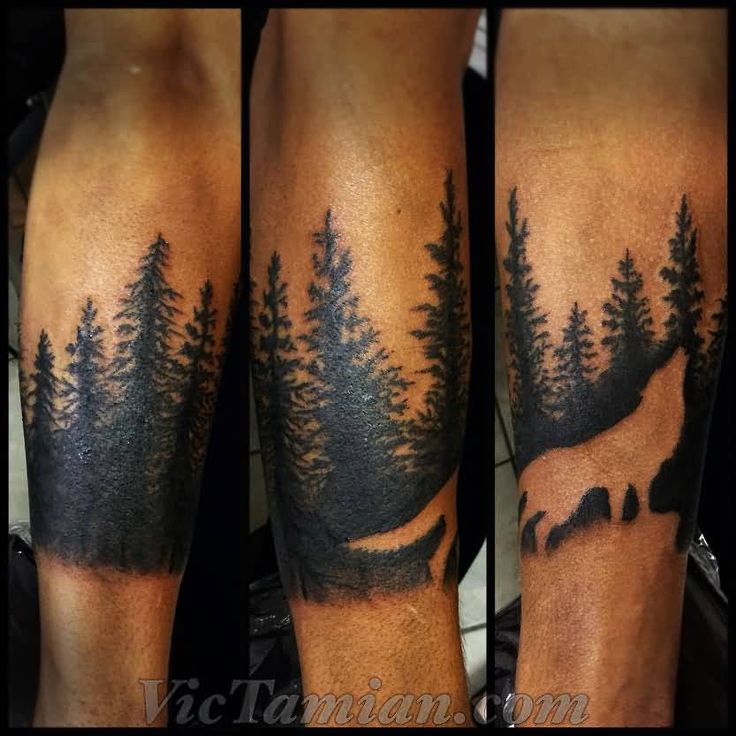 Outline Wold And Forest Tree Tattoos On Arm