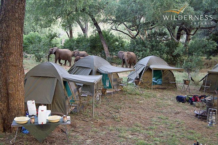 Pafuri Walking Trail - The camp is situated in a wildlife rich area. #Safari #Africa #SouthAfrica #WildernessSafaris