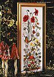 Луговые цветы. Обсуждение на LiveInternet - Российский Сервис Онлайн-Дневников