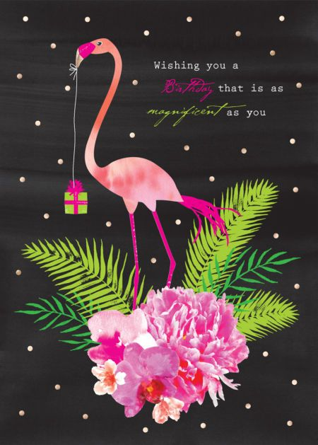 Debbie Edwards - Female Birthday Floral Flamingo And Tropical Flowers