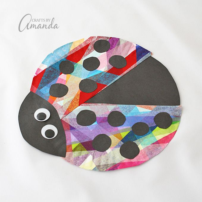 Paper Plate Ladybug So Colorful Tissue Paper Kid S