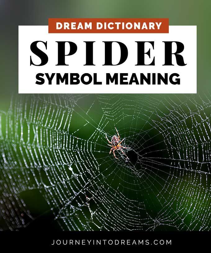 Spider Dream Symbol Meaning Spider Dream Meaning Dream Meanings Dream Symbols