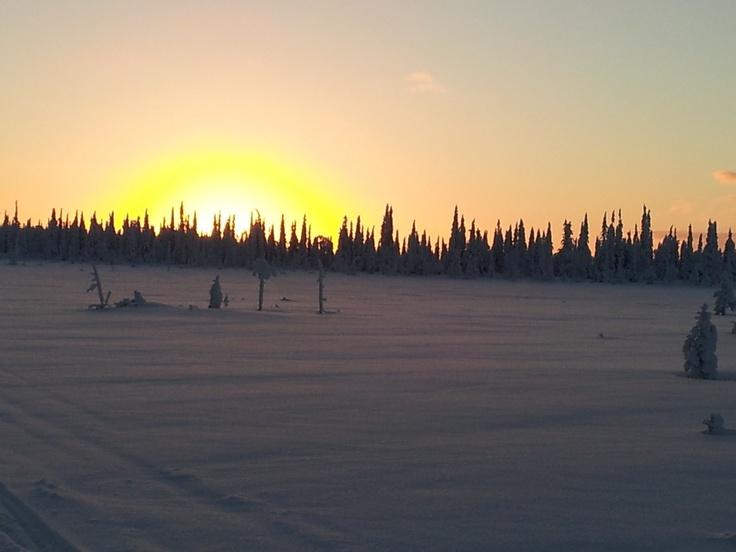 """Foto 20 - Navidad 2012 en Laponia - Familia Beleña"" Viaje a Laponia | PapaNoelEnLaponia | Viaje a Laponia Papa Noel | Papa Noel Laponia | Viajar a Laponia"