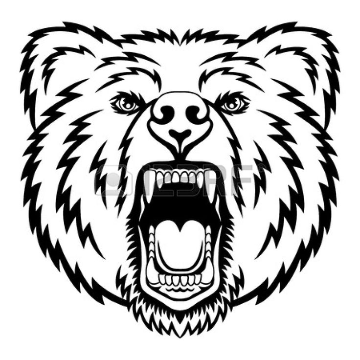52 best images about Bear, Art, Sketches and Images on ... Bear Face Drawing