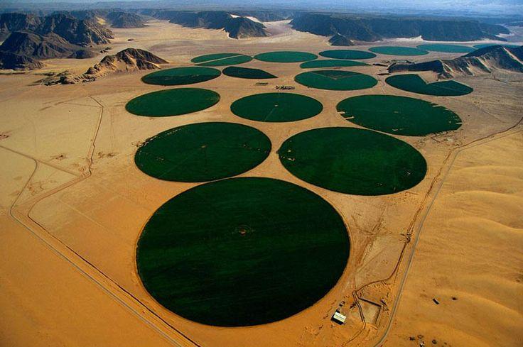 Riego por pivote, Ma'an. Jordania.zavlažování v Wadi Rum, Ma'an, Jordánsko. Kruhové plochy cca 1 km. v průměru mají zavlažovat  pouště a v nich obilí, ovoce, zeleninu a krmiva pro hospodářská zvířata Tento typ zavlažovacího systému se nazývá Kingpin, v oblastech, kde je extrémně vzácná voda. Účinnost tohoto typu zavlažování je téměř 90%.
