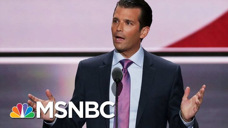 Donald Trump Junior Exposed For Wikileaks Contacts | Rachel Maddow | MSNBC
