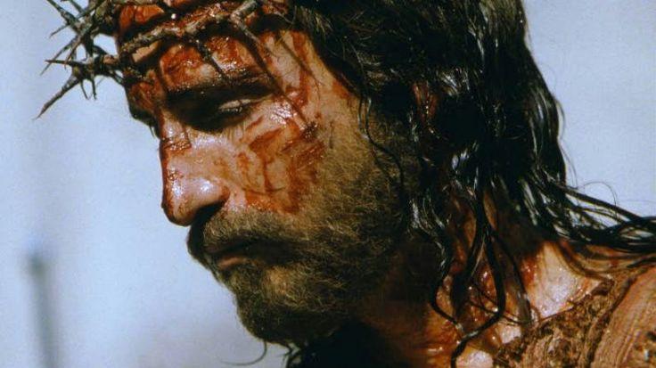 терновый венец иисуса христа: 21 тыс изображений найдено в Яндекс.Картинках
