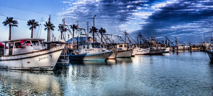 1000 images about sea gun cottage rockport tx on for Miss kittys fishing getaways